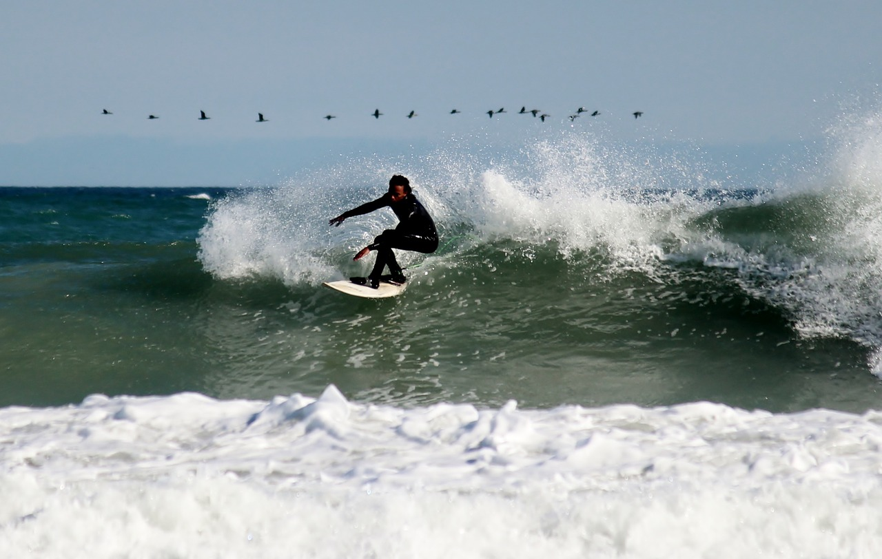 surfer with pelicans overhead