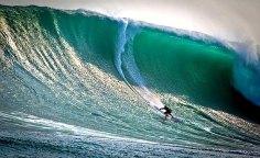 huge wave small surfer