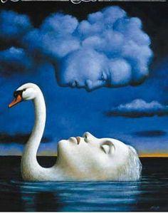 sleeping dreaming swan