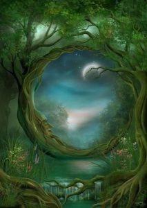 woodscape dreaming
